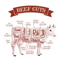 Rundvlees snijdt illustratie vector