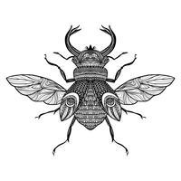Schets decoratieve bug