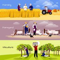 Wijngaard boerenerf gewas oogsten platte banners