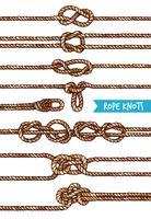 touw knopen set vector