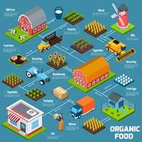 Biologisch voedsel isometrisch stroomdiagram vector