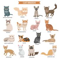 Kattenras ingesteld vector
