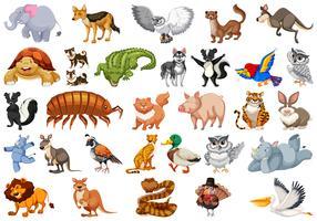 Set van dieren karakter vector