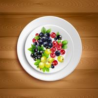 Berry Plate Realistische vectorillustratie