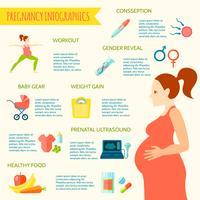 Zwangerschap Infographic Set vector