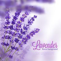 Lavendel bloem achtergrond vector