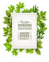 Decoratief frame met lente bladeren vector