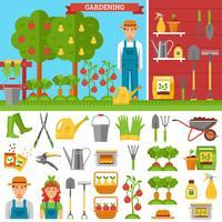 Groeiende groenten en fruit in de tuin vector