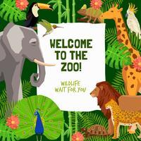 Kleurrijke affiche met uitnodiging om dierentuin te bezoeken