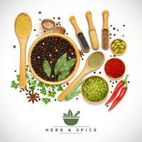 kruiden en specerijen poster vector