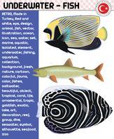 vis, vissoorten - onderwaterleven, eps vector