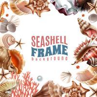 Seashell realistische frame vector