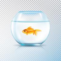 Gouden vis kom realistisch transparant vector