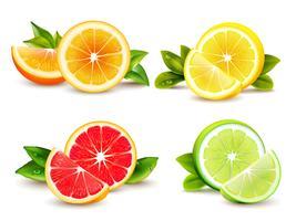 Citrusvruchten segmenten 4 realistische iconen vector