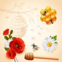 Gekleurde samenstelling van de honing