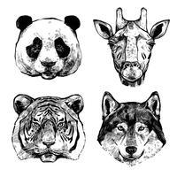 Handgetekende dierenportretten vector