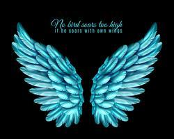 Kleur Bird Wing achtergrond vector
