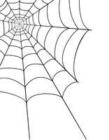 spider web voorraad vectorillustratie