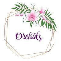 Bloemenontwerp geometrisch kader. Orchidee, eucalyptus, groen. Trouwkaart. vector
