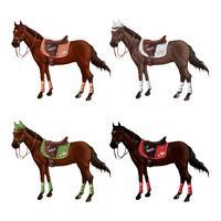Aantal paarden van verschillende soorten in verschillende munitie voor springen - zadel, pet, hoofdstel, halster, wagtrap, stempelen. Ruiterloos.