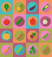 groenten plat pictogrammen met de schaduw vectorillustratie