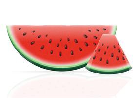 watermeloen rijpe sappige vectorillustratie vector