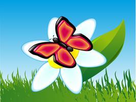 vlinder op een bloem vector