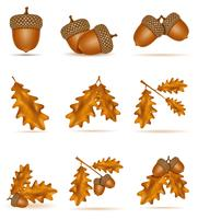 stel pictogrammen herfst eiken eikels met bladeren vectorillustratie