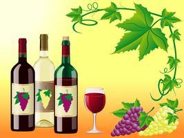 wijn is rood wit met druiven en een decoratief patroon van bladeren vector