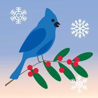 blauwe Vlaamse gaai met hulsttak en sneeuwvlokken