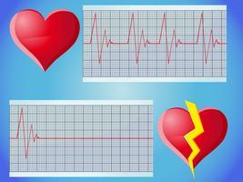 hartslag puls vector