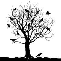Vogels over boom. Boslandschap. Wild natuursilhouet