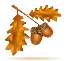 herfst eiken eikels met bladeren vectorillustratie