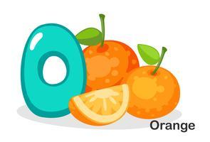 O voor oranje vector