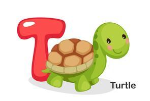 T voor schildpad vector