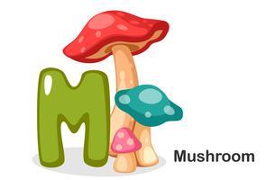 M voor paddenstoel vector