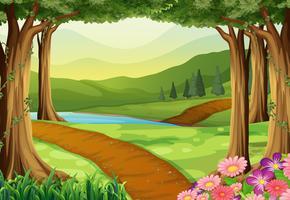 Aardscène met rivier en bos