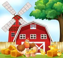 Kip en kuikens op de boerderij vector