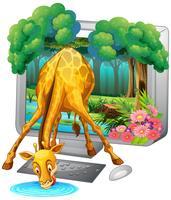 Computerscherm met giraffe drinkwater