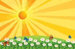 Een zonsonderganglandschap met vlinders in de tuin