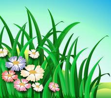 Groene planten met kleurrijke bloemen vector