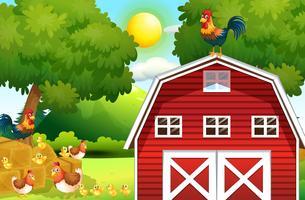 Boerderij scène met kippen op de schuur