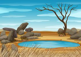 Scène met watergat in het veld