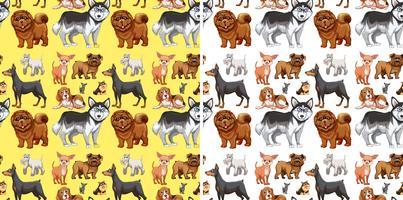 Naadloze achtergrond met schattige honden vector