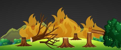 Wild vuur in het bos 's nachts
