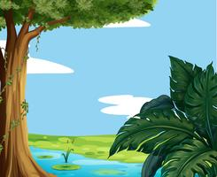 Scène met vijver en grote boom