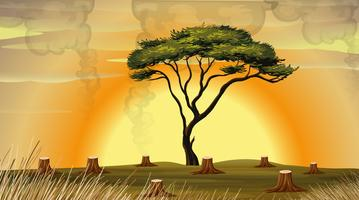 Ontbossingsscène met rook in het gebied vector