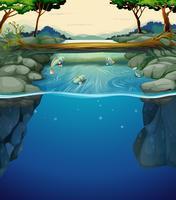 Aardscène met vissen in de rivier