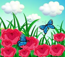 Vlinders in de weide vector