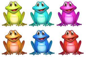 Zes verschillende kleuren kikkers